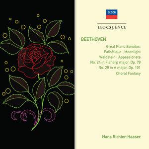 Karl Böhm,Hans Richter-Haaser 歌手頭像