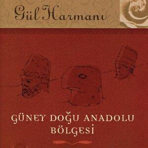 Gul Harmani 歌手頭像