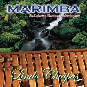 Marimba de Zeferino Hermanos Nandayapa 歌手頭像