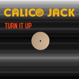 Calico Jack 歌手頭像