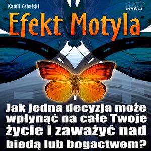 Kamil Cebulski 歌手頭像