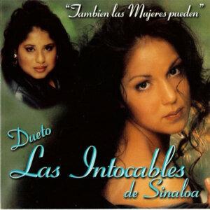 Dueto Las Intocables De Sinaloa 歌手頭像