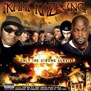 Kami Kaze Inc. 歌手頭像