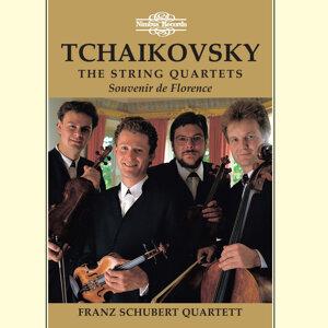 Franz Schubert Quartett 歌手頭像