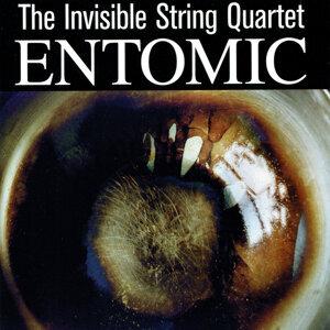 The Invisible String Quartet 歌手頭像