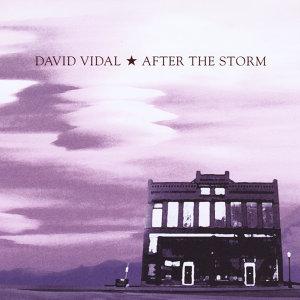 David Vidal 歌手頭像