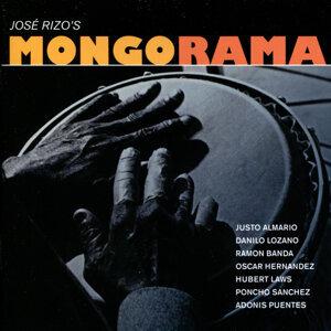 Mongorama 歌手頭像
