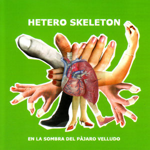 Hetero Skeleton 歌手頭像