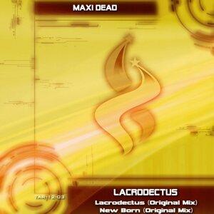 Maxi Dead 歌手頭像