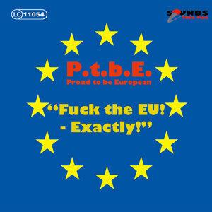 P.t.B.E Proud to Be European 歌手頭像