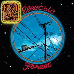 Gekko Projekt 歌手頭像