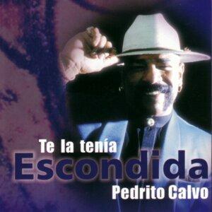 Pedrito Calvo 歌手頭像
