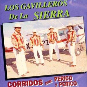 Los Gavilleros De La Sierra 歌手頭像