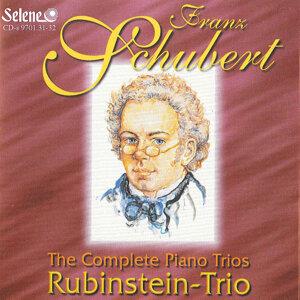 Rubinstein Trio 歌手頭像