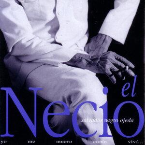 Salvador Negro Ojeda 歌手頭像