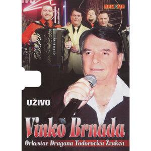 Vinko Brnada 歌手頭像