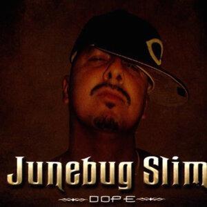 Junebug Slim 歌手頭像