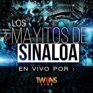 Los Mayitos De Sinaloa 歌手頭像