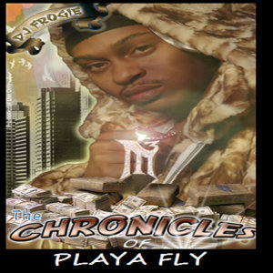 Playa Fly Artist photo