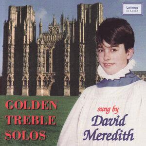 David Meredith 歌手頭像