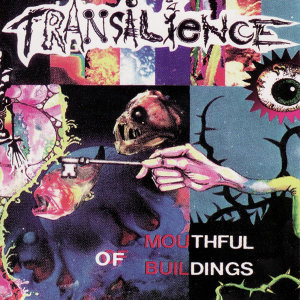 Transilience 歌手頭像