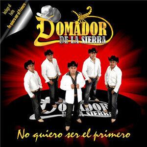Domador De La Sierra 歌手頭像