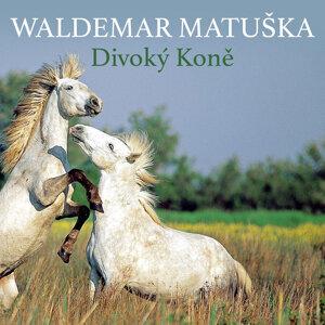 Waldemar Matuška 歌手頭像