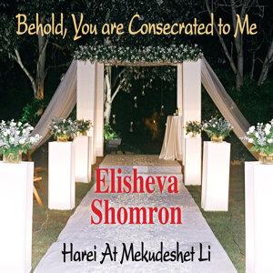 Elisheva Shomron 歌手頭像