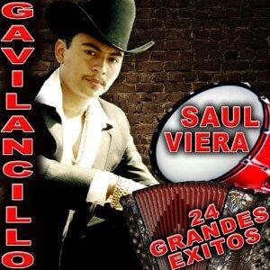 Saul Viera El Gavilancillo 歌手頭像