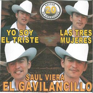 Saul Viera El Gavilancillo