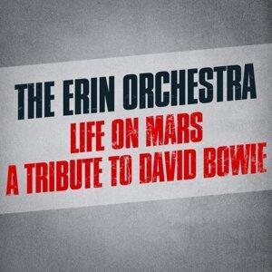 The Erin Orchestra 歌手頭像