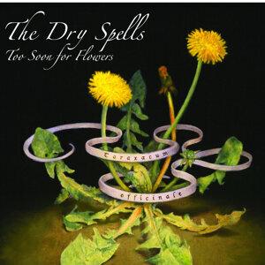 The Dry Spells 歌手頭像