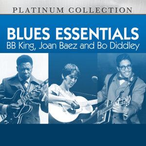 B.B. King, Joan Baez, Bo Diddley 歌手頭像