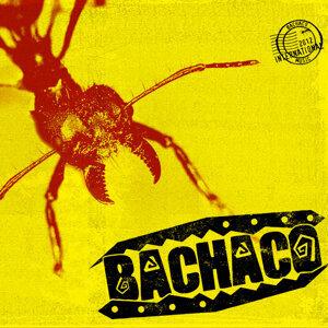Bachaco 歌手頭像