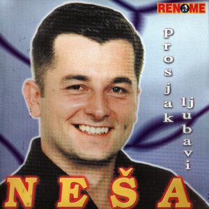 Nesa 歌手頭像