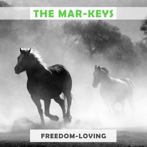 The Mar-Keys 歌手頭像