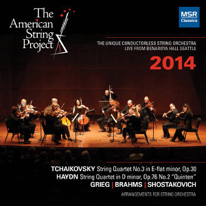 The American String Project 歌手頭像