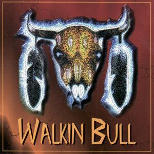 Walkin Bull 歌手頭像