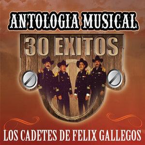 Los Cadetes de Felix Gallegos 歌手頭像