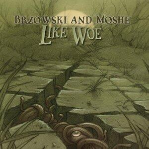 Brzowski & Moshe 歌手頭像