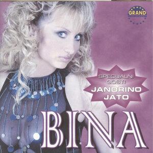 Bina 歌手頭像