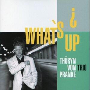 Thüryn Von Pranke Trio 歌手頭像