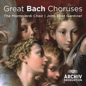 The Monteverdi Choir,John Eliot Gardiner 歌手頭像