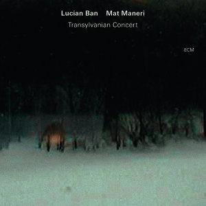 Lucian Ban,Mat Maneri 歌手頭像