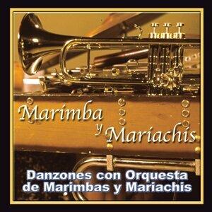 Marimba y Mariachis