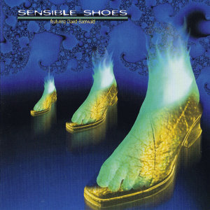 Sensible Shoes 歌手頭像