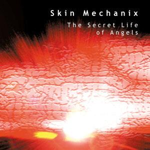 SkinMechanix 歌手頭像