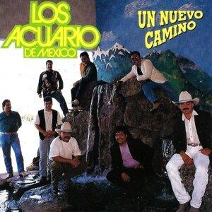 Los Acuario De Mexico 歌手頭像