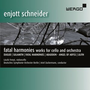 Deutsches Symphonie-Orchester Berlin 歌手頭像