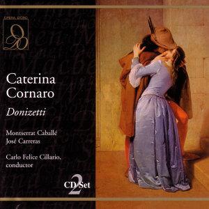 Gaetano Donizetti 歌手頭像